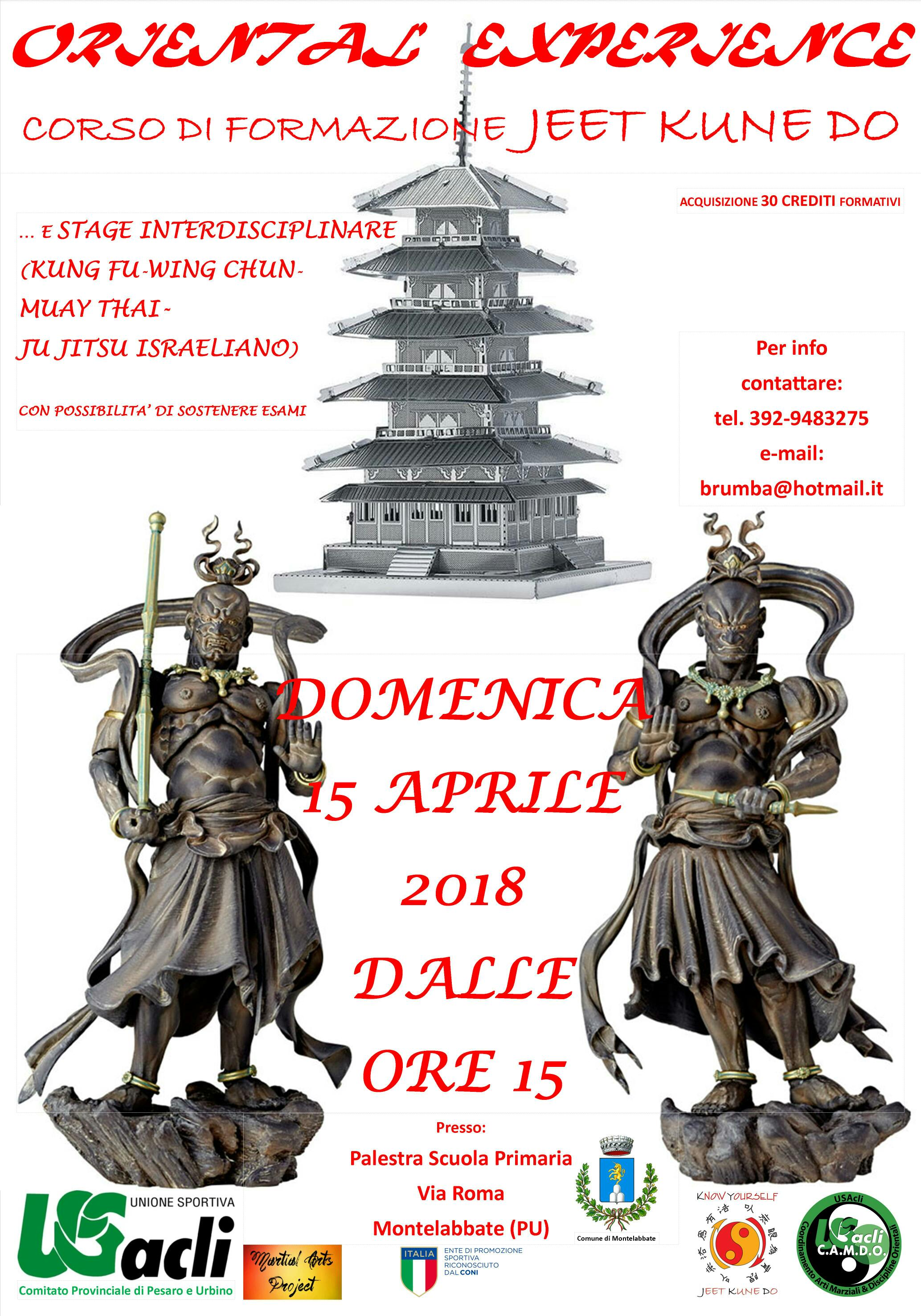 stage interdisciplinare